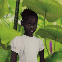 Ruud van Empel's World #1 at Phillips Photographs