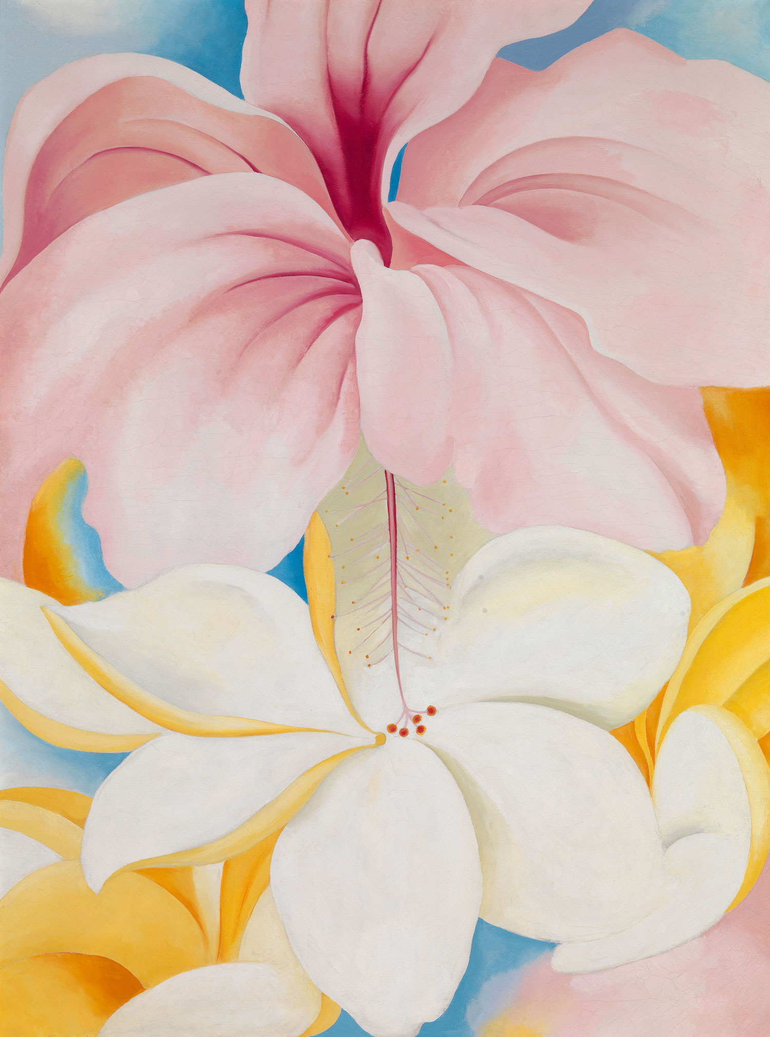 ArtDependence | The Symbolism of Flowers in the Art of Georgia O'Keeffe